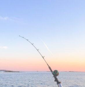 makrillfiske, västkusten, Knippla, Öckerö, fiska makrill